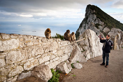 Ape's Rock in Gibraltar